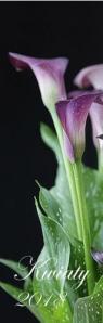 Kalendarz Pasek 2018 - Kwiaty