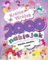 Kraina Wróżek 2000 naklejek