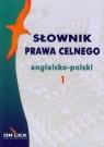 Słowniki prawa celnego polsko-angielskie, angielsko-polskie pakiet Kapusta Piotr