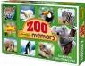Memory ZOO - Edukacyjna gra towarzyska (3051)