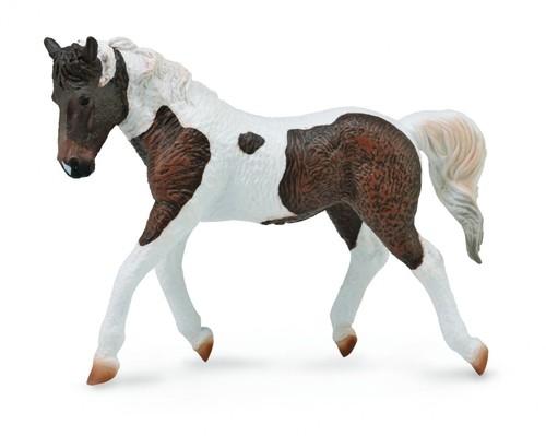 Koń rasy Bashkir Curly XL (88780)