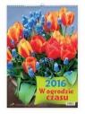 Kalendarz W ogrodzie czasu 2016