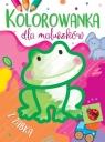Kolorowanka dla maluszków z żabką