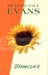 Słonecznik  Evans Richard Paul
