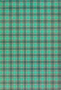 Brulion A4 w kratkę 288 kartek szkocka krata