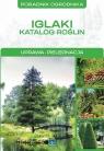Iglaki Katalog roślin Mazik Michał