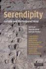 Serendipity Iain Morley