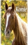 Kalendarz 2022 Ścienny Konie ARTSEZON