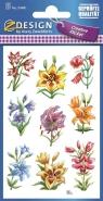 Naklejki z kwiatami polnymi (54481)