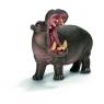 Hipopotam (14681)