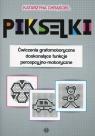 Pikselki Ćwiczenia grafomotoryczne doskonalące funkcje percepcyjno-motoryczne