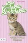 Pakiet 3 książek. Klub Kociaków Słodziaków