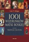 1001 wizerunków Matki Boskiej Tradycja i kultura