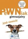 PeWNiak gimnazjalny Jezyk niemiecki + CD Cader Jakub, Kantorska Sylwia, Kawa Paulina, Pac-Kabała Joanna