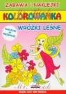 Kolorowanka Wróżki leśne Kondracka Kornelia