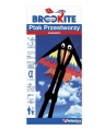 Brookite Latawiec Ptak przestworzy