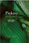 Kalendarz 2020 Reklamowy Piękno przyrody RW22