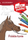 Kolorowanka Polskie konie