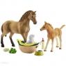 Quarter Horse - Zestaw pielęgnujący + źrebię (42432) Wiek 5-12