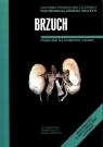 Anatomia Prawidłowa Człowieka Brzuch Podręcznik dla studentów i