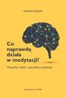 Co naprawdę działa w medytacji? Wspólny rdzeń i specyfika medytacji Radoń Stanisław