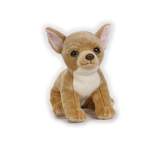 Chihuahua Maskotka (770683)