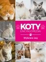 Encyklopedia. Koty - wybrane rasy Małgorzata Młynek