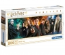 Puzzle Panorama 1000: Harry Potter (61883)