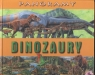Dinozaury. Panoramy Wielkie panoramiczne ilustracje Harris Nicholas