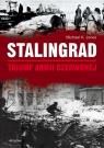 Stalingrad Triumf Armii Czerwonej