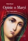 Opinie o Maryi. Fakty, poszlaki, tajemnice Vittorio Messori