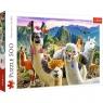Puzzle 500: Lamy w górach (37383)