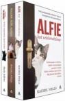 Alfie kot wielorodzinny / Rodzina kota Alfiego / Syn kota Salomona