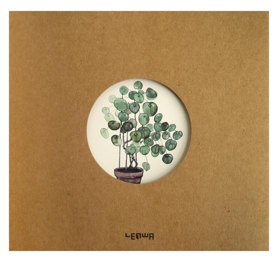 Notes B5/80K eko Roślina w doniczce (0073-0198)