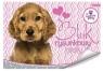 Blok rysunkowy biały A4 Sweet Pets 20 kartek z pierwszą stroną do kolorowania