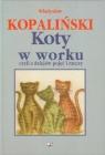 Koty w worku czyli z dziejów pojęć i rzeczy
