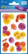 Naklejki z kwiatami - Margaretki (54483)