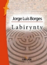 Wielcy literatury argentyńskiej Borges Jorge Luis, Orozco Olga, Pizarnik Alejandra