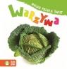Maluch poznaje świat Warzywa