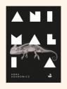 Animalia Adamowicz Anna