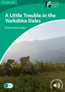 A Little Trouble in the Yorkshire Dales MacAndrew Richard