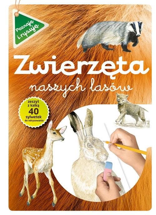 Zwierzęta naszych lasów zeszyt z kalką Kopiec-Sekieta Katarzyna