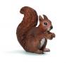 Jedząca wiewiórka (14684)