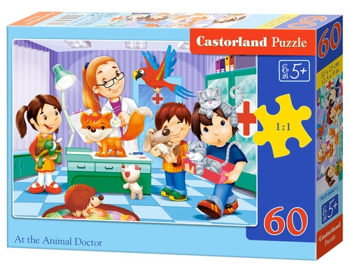 Puzzle 60: At the Animal Doctor