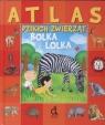 Atlas dzikich zwierząt Bolka i Lolka