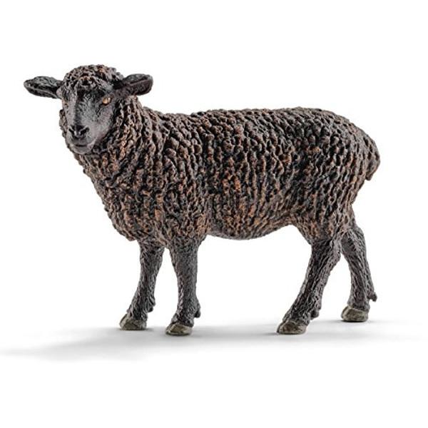 Czarna owca - 13785