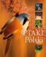 Ptaki Polski (Uszkodzona okładka) Matoga Karolina