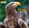 Ptaki polskie Poznajemy zwierzęta
