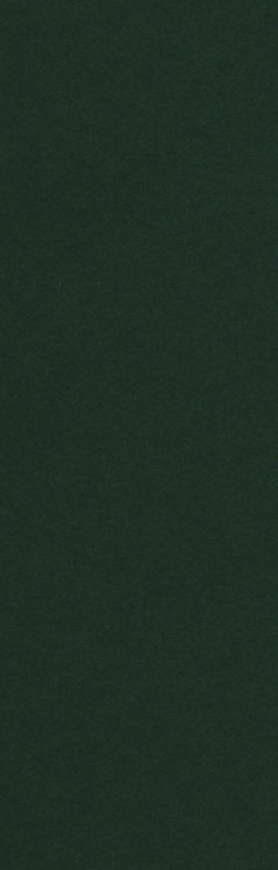 Tektura A4 ciemno zielona (CPA4-225-10 402)
