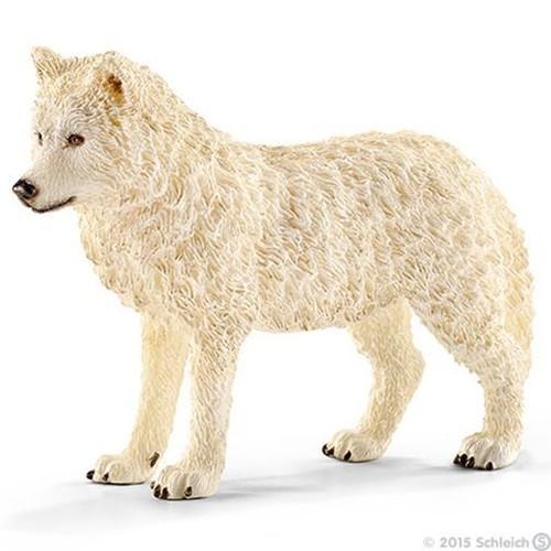 Wilk arktyczny